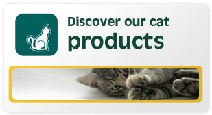 Discover our cat products