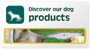 Discover our dog products